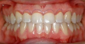 diş hekimi