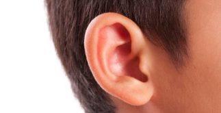 kulak iltihabı, hamilelerde kulak iltihabı, hamilelerde kulak iltihabı neden olur